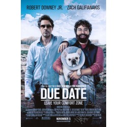 Due Date (2010)