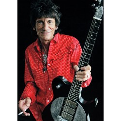 The Rolling Stones: Ron Wood